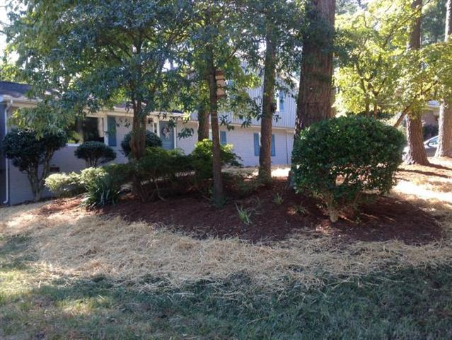 Freshly mulched landscaping bed with plants and trees and grass seed and straw surrounding it in a backyard.