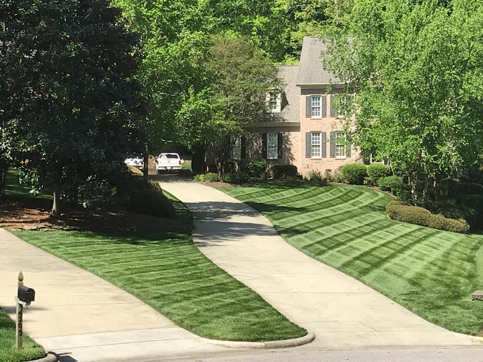 Wake Forest North Carolina Lawn Care Services